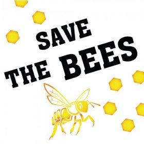 Méhecske Kollekció